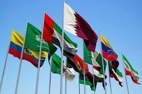 Заседание ОПЕК не повлияет на динамику нефти