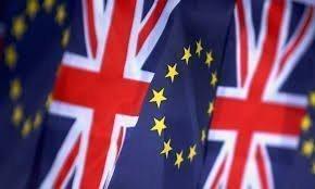 Где отслеживать результаты референдума?
