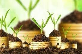 5 рекомендаций по управлению собственным капиталом