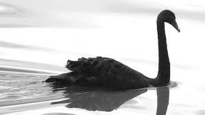Индикатор «черных лебедей» достиг рекорда