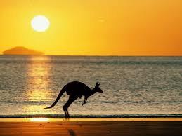 Экономика Австралии выросла на 0.8%