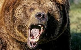 Фондовый рынок может установить «медвежий» рекорд