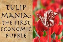 Тюльпановый пузырь: как это было?