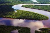Универсальная стратегия «Дикая река»